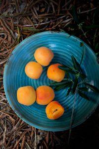 Greek apricots
